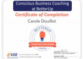 Conscious Business certificate