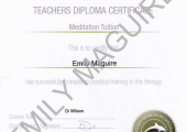 Teaching Diploma in Meditation Certificate
