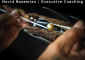 Navid Nazemian Exeuctive Coaching<br />Realising your Full Potential