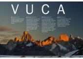 Navid Nazemian Exeuctive Coaching<br />VUCA