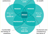 Ikigai - finding your reason for being and purpose in life