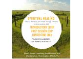 Energy Healing and Chakra Balance