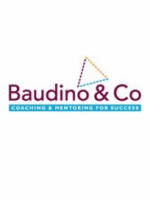 Baudino & Co Ltd