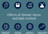 Effects of chronic stress and high cortisol
