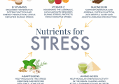 Nutrients for stress