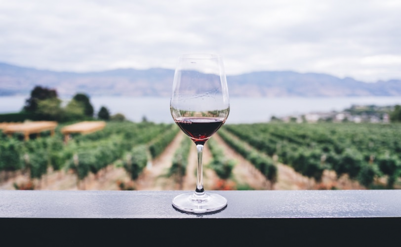 Glass of wine on fence