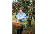 Amie Butler Nutrition<br />Picking apples
