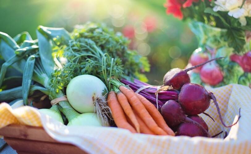 盒子里的蔬菜