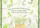 The Annual Herb Walk 2018