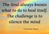 Caroline Myss Quote