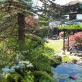 TW Reiki Garden View<br />Harmony and Tranquility at TW Reiki