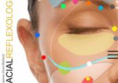 Facial reflexology zone face lift massage