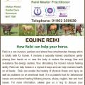Equine Reiki Postcard