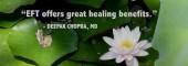 Julie Warrington- Prana Energy Therapies image 1