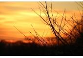 Sunset over Goring