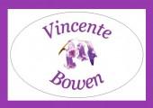 Vincente Bowen Logo
