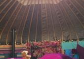 My healing Bear enjoying quiet meditation in the yurt