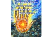 Carol-Ann Phillips,  Tranquility Mind And Body Therapies image 1