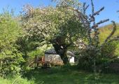 Reiki courses<br />The yurt in Bath where I teach