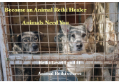 Become an Animal Reiki Healer