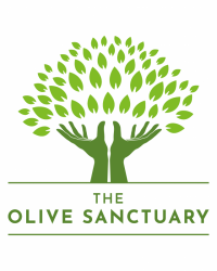The Olive Sanctuary Complementary Health Studio