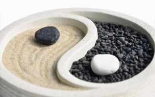 Using Chinese medicine for immunity