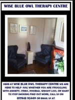 Wise Blue Owl Therapy Centre