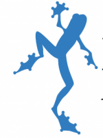 Blue Frog Therapies